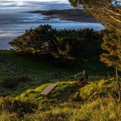 Mountain Bike trails backdrop